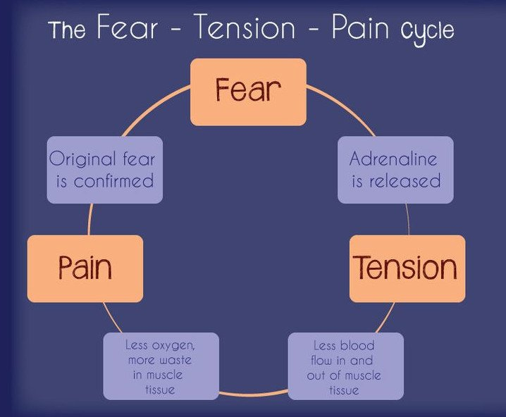 Fear Tension Pain cycle - design by Swell Doula Service